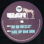 Jungle Cakes 02 RP - No No No / Hail Up The Lion
