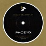 DDD006 - Phoenix / Tears In Rain