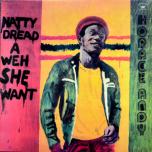 Natty Dread A Weh She Want  LP