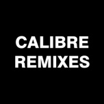 Fokuz 95 - Calibre Remixes