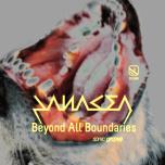 Sonic Groove 1988 - Beyond All Boundaries