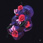 Critical 133 - Stone Rose