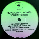 Tropical Disco Edits Volume Fourteen