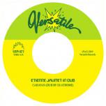 Versatile 127 - Etienne Jaumet In Dub