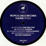 Tropical Disco Edits Volume Fifteen