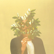 French Kiwi Juice  2xLP