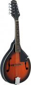 M20 S mandolína s masivní deskou