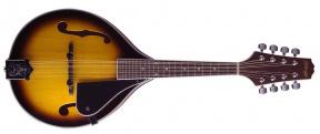 M40 S Bluegrass