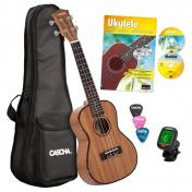 Koncertní ukulele HH2036GB