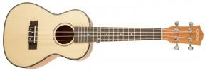 Koncertní ukulele HH2150 set