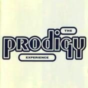 Experience  2xLP