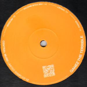 Central Music Limited Sampler 12